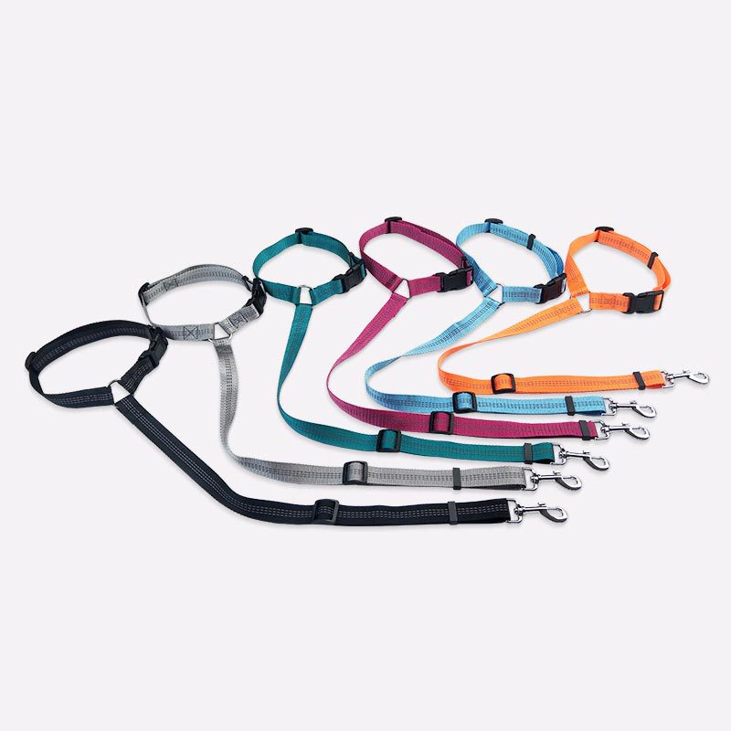Chic Dainty Adjustable Pet Leash for Daily Road Trips