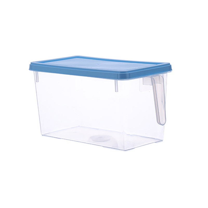 Portable Ingredients Storage Box with Handle for Preserving Food