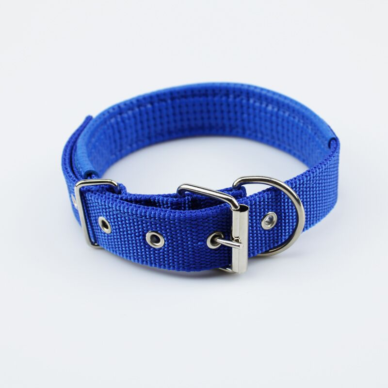 Simple Pet Collar for Everyday Use