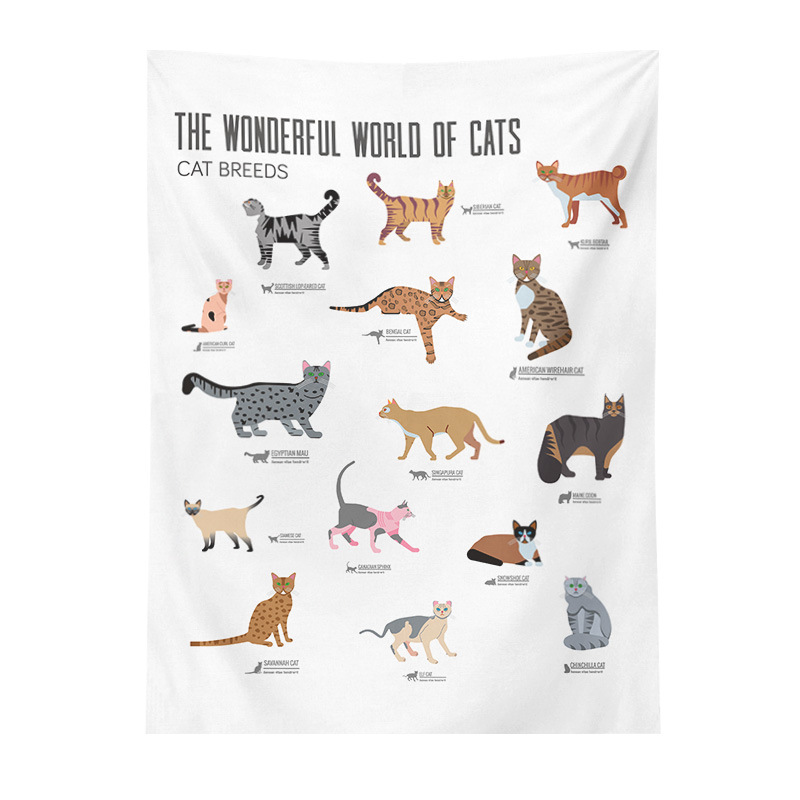 Accurate Charts Tapestry for Kids Playroom
