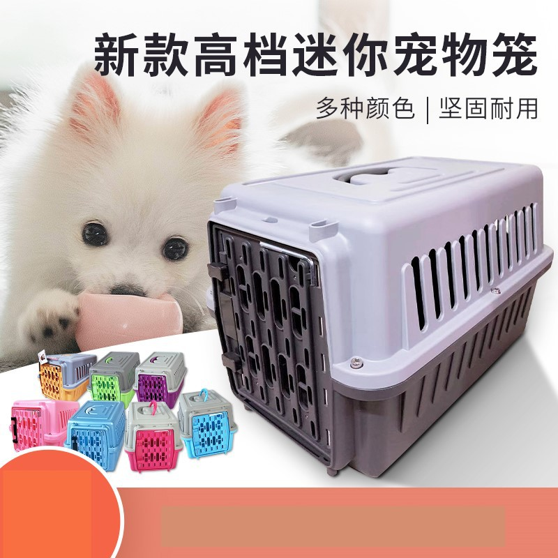 Durable Two-Toned Pet Box Carrier for Taking Pets Outside