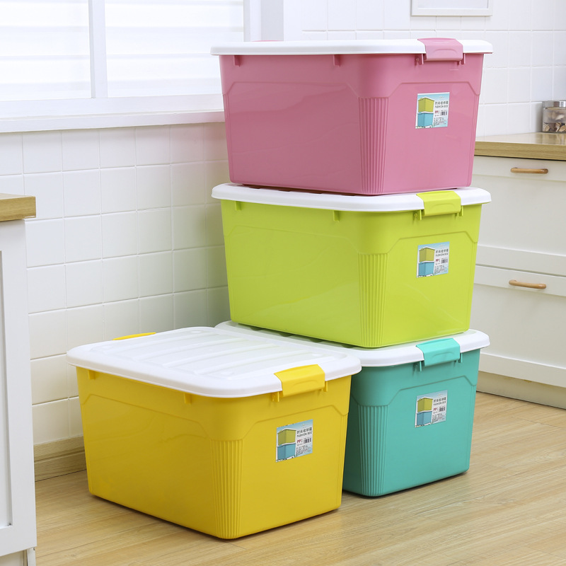 Capacious and Large Plastic Storage Box for Sorting Clothes