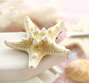 Resin Starfish Hairclip for Beach Outing Accessory