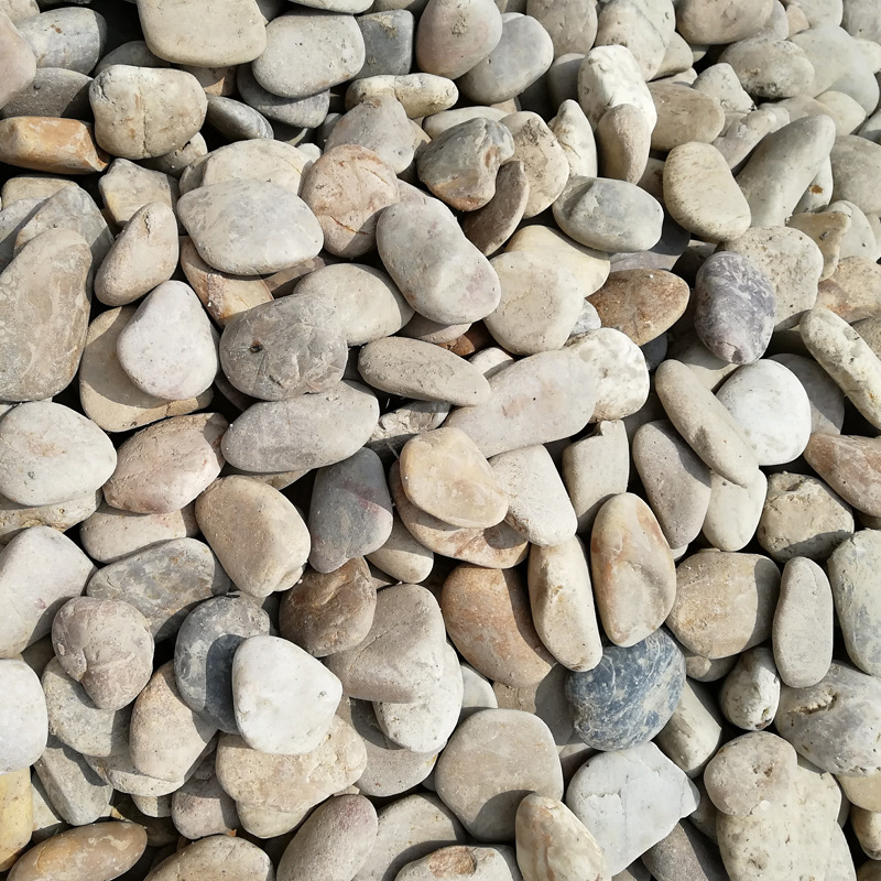 Medium Sized Pebble Stones for Landscaping