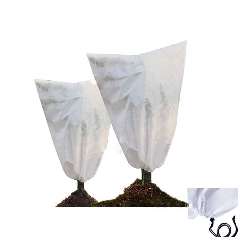 Nonwoven Fabric Plant Weather Protectors for Incoming Weather Disturbances