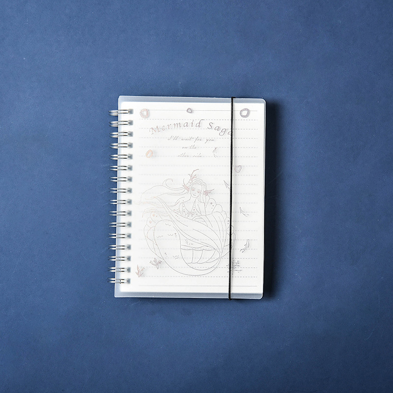 Oriel Notebook Collection
