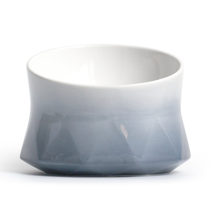 Good for Spine Ceramic Pet Bowl
