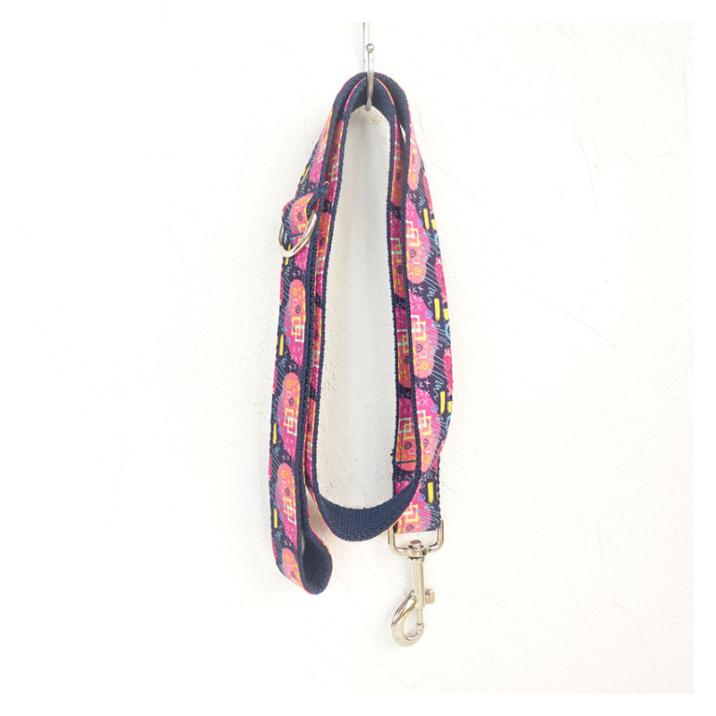 Neon Abstraction Pet Collar and Leash