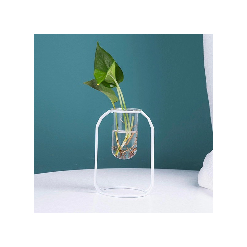 Minimalist Test Tube Vase and Holder for Indoor Plants