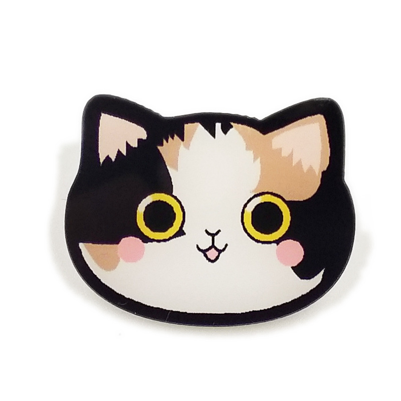 Cute Cat Acrylic Brooch for Bags and Clothes