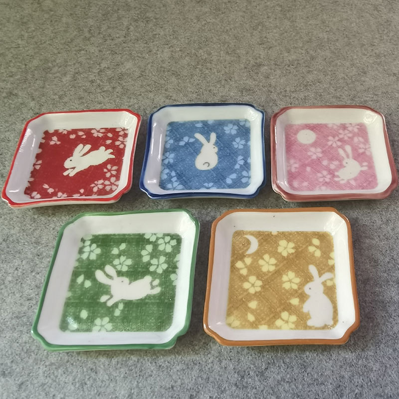 Small Ceramic Plate for Kids' Play Time