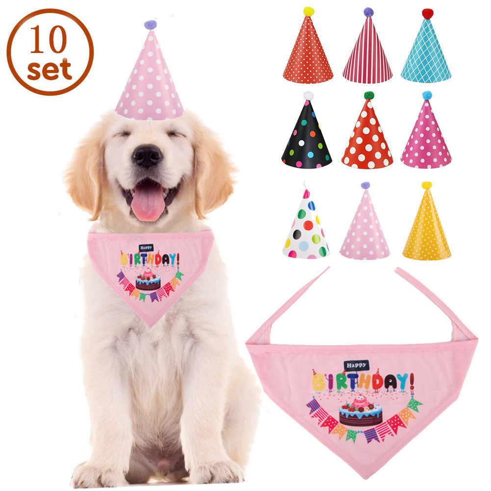 Adorable Cone Hat and Birthday Pet Bib for Pets' Birthday Parties