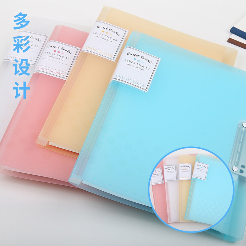 High-Quality Colored Folder for Important Documents