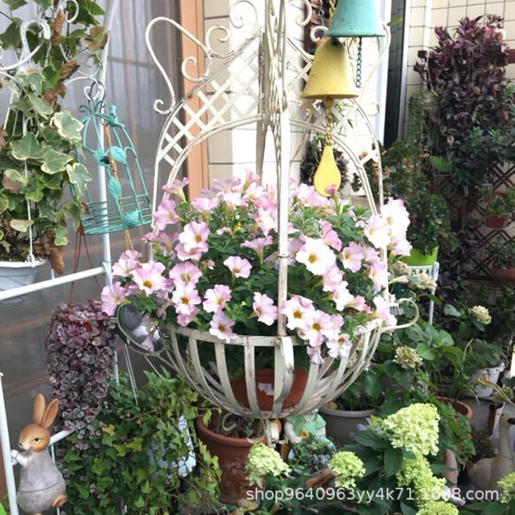 Hanging Wrought Iron Basket for Patio Display