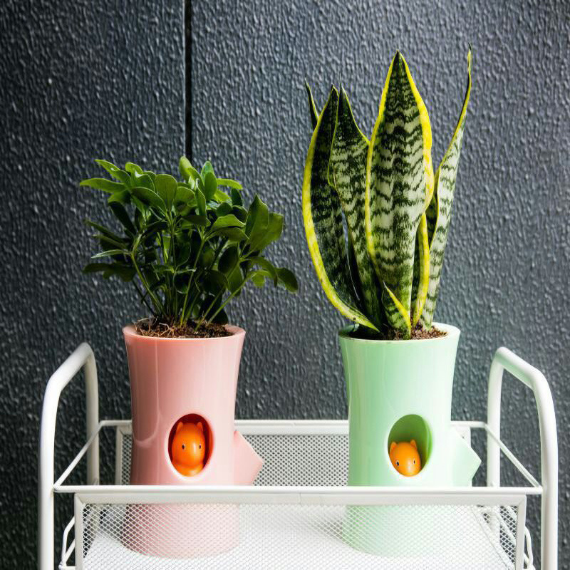 Peeking Squirrel Plant Pot for Reminding You to Water Your Plants