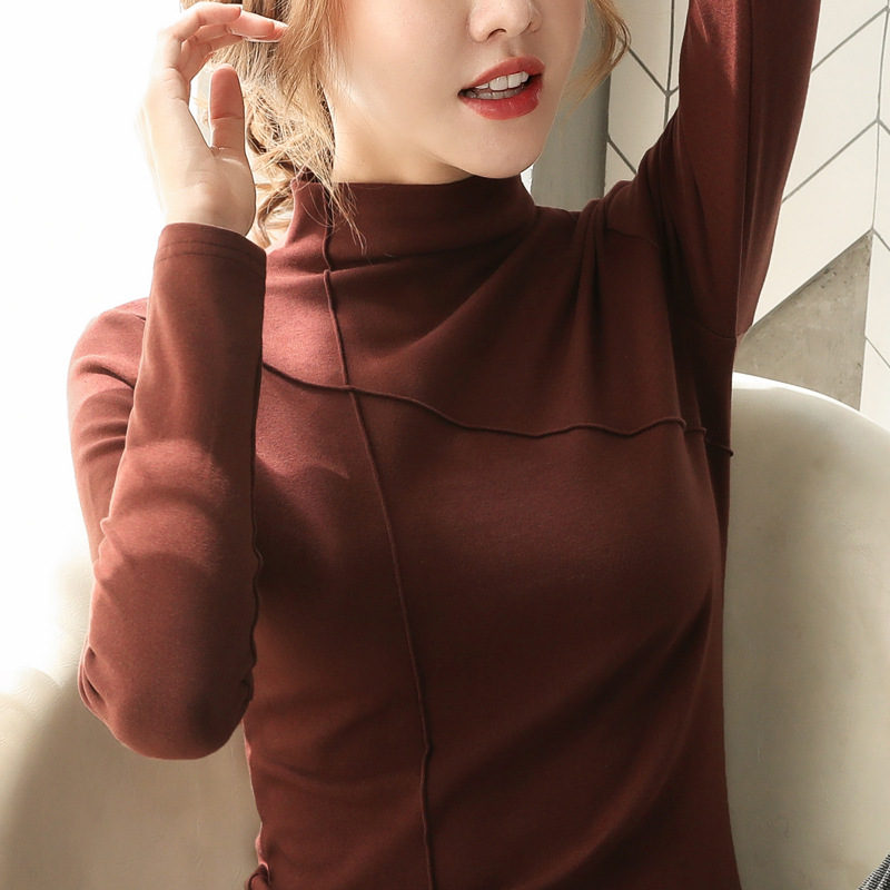 Chic High Neckline Long Sleeved Top for Casual Winter Looks