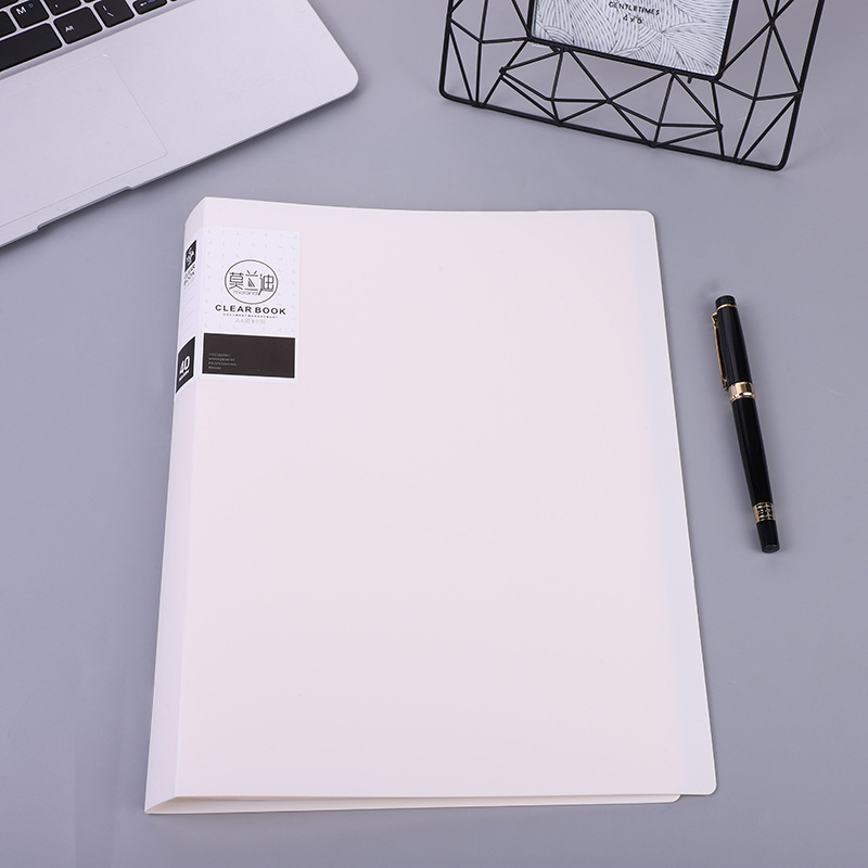 Spacious Multi-Colored A4 Folder for Important Document Storage
