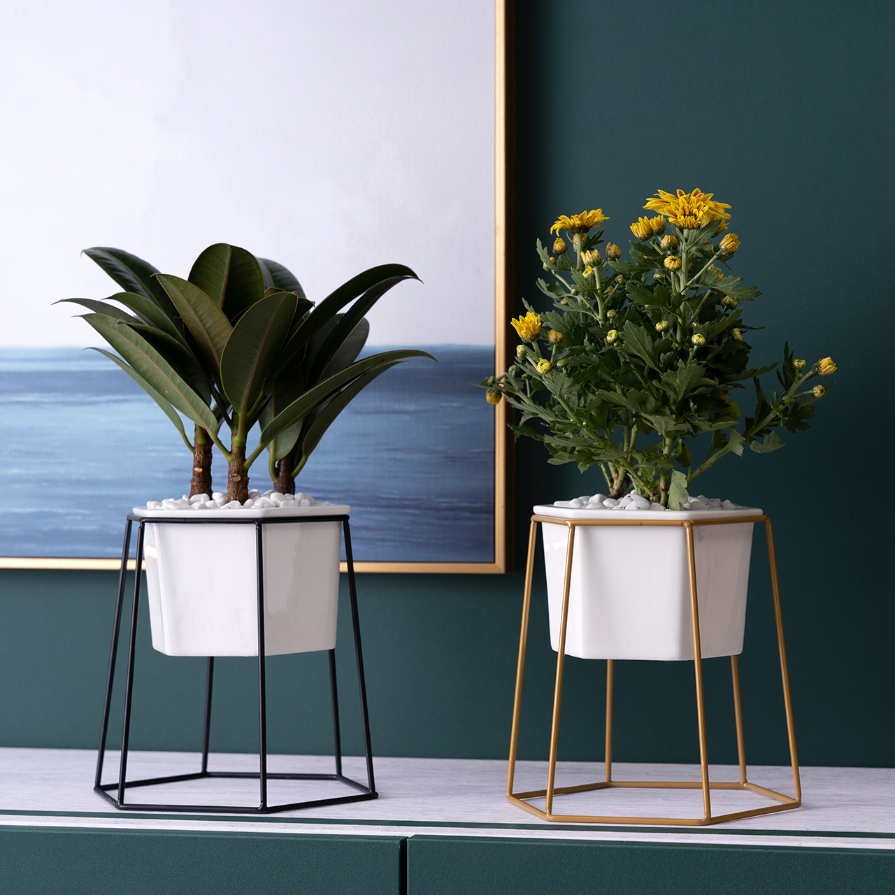 Hexagonal Plant Pot with Frame for Indoors