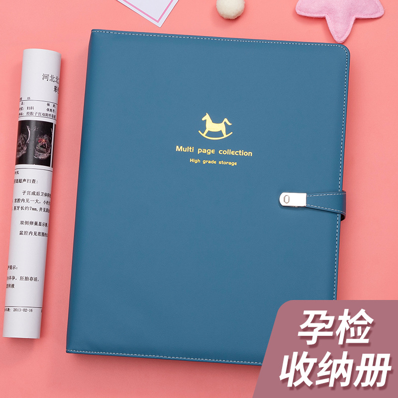 Stunning Pregnancy Notebook for Hospital Appointments and Notes