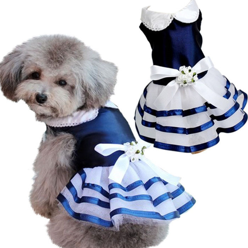 Alluring Striped Pet Dress for Attending Events