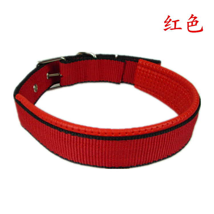 Minimalist Collar for Keeping your Pets Secured