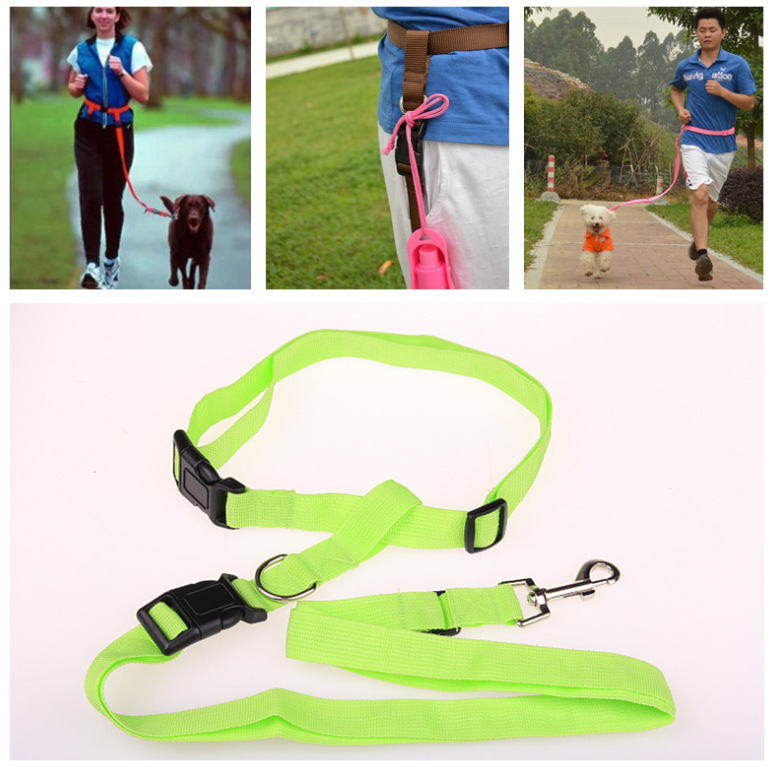 Solid-Colored Nylon Dog Traction Rope for Morning Run