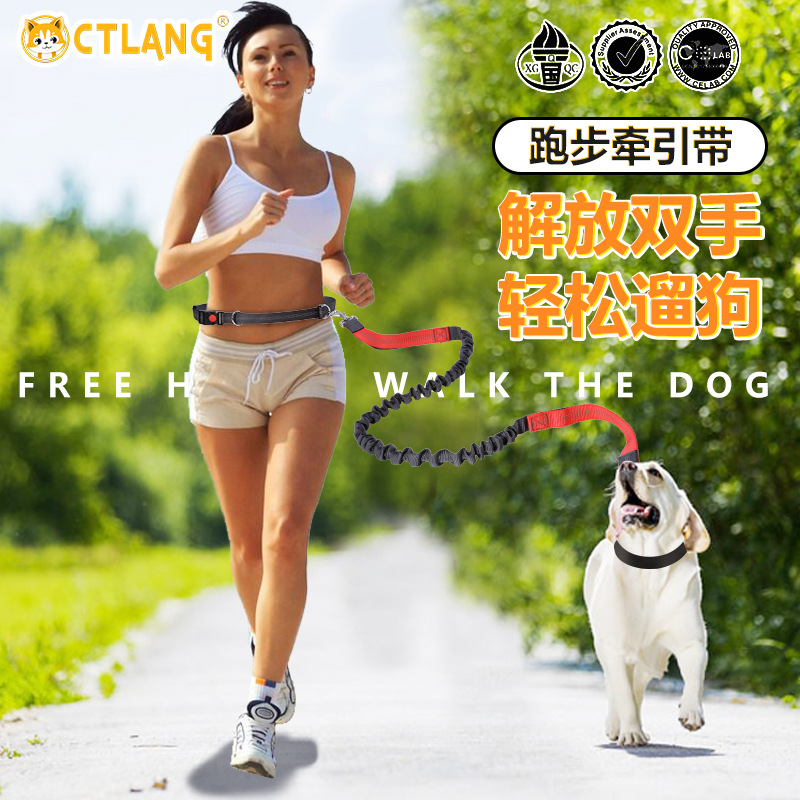 Innovative Plain Colored Reflective Flexible Fitness Belt and Dog Leash for Active Wear