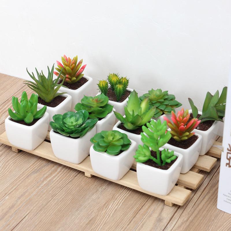 Artificial Succulents for Home Decor