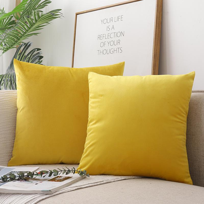 Pastel Velvet Throw Pillow for Common Room