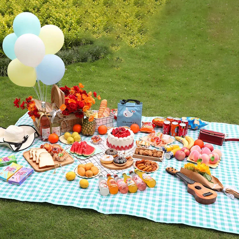 Moisture-Proof Picnic Mat for Outdoor Family Gatherings