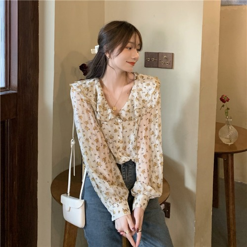 Classic Chiffon Style Blouse for Day Trip Travel Fashionable Outfit