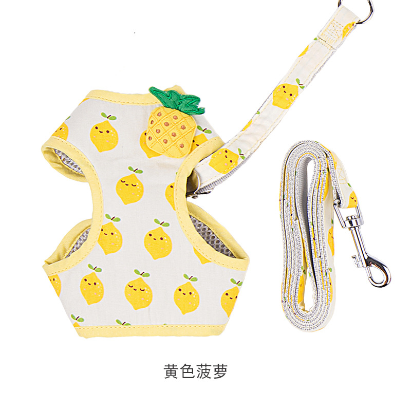 Adorable Fruit Themed Pet Harness with Leash for Small-Sized Pets