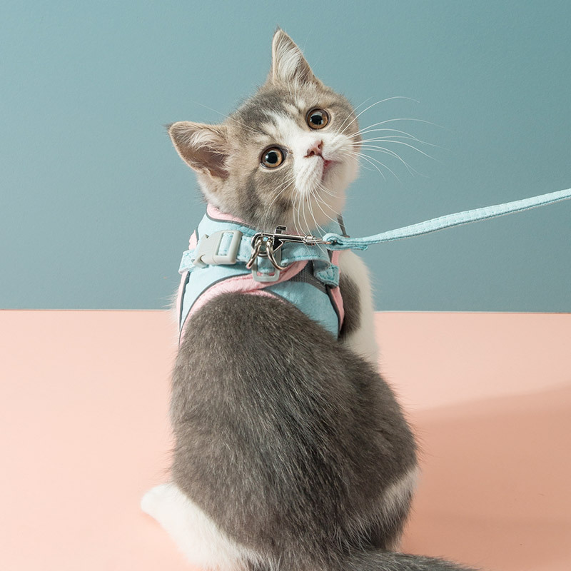 Stylish and Quality Cat Leash for Outdoor Walking