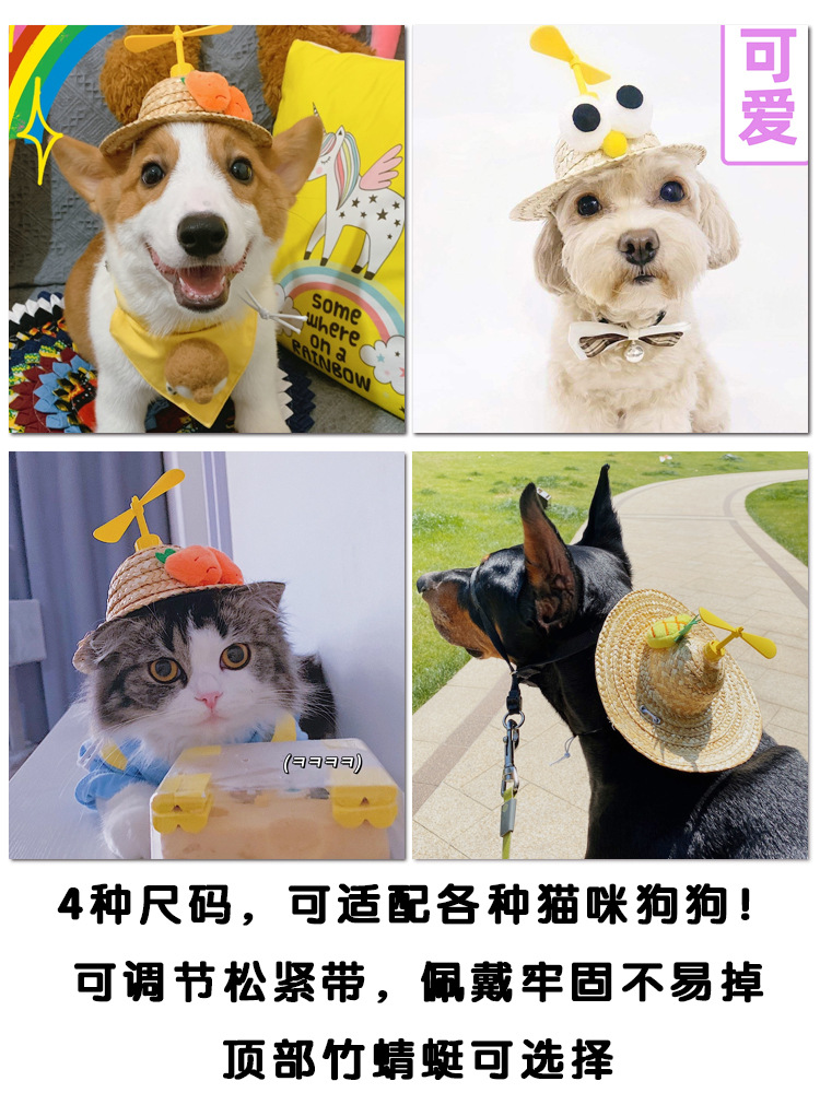 Adorable Trendy Pet Hat for Dogs and Cats