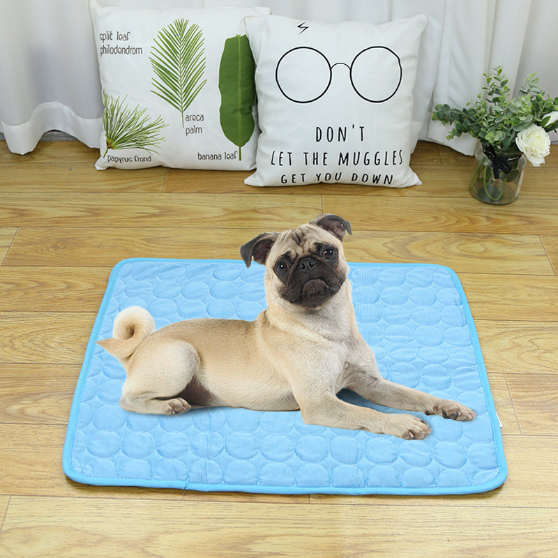 Fast-Absorbing Cotton Floor Mat for Keeping Floors Dry