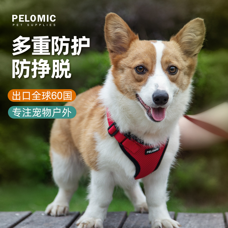 Strong and Stylish Dog Vest With Leash for Outdoor Walking